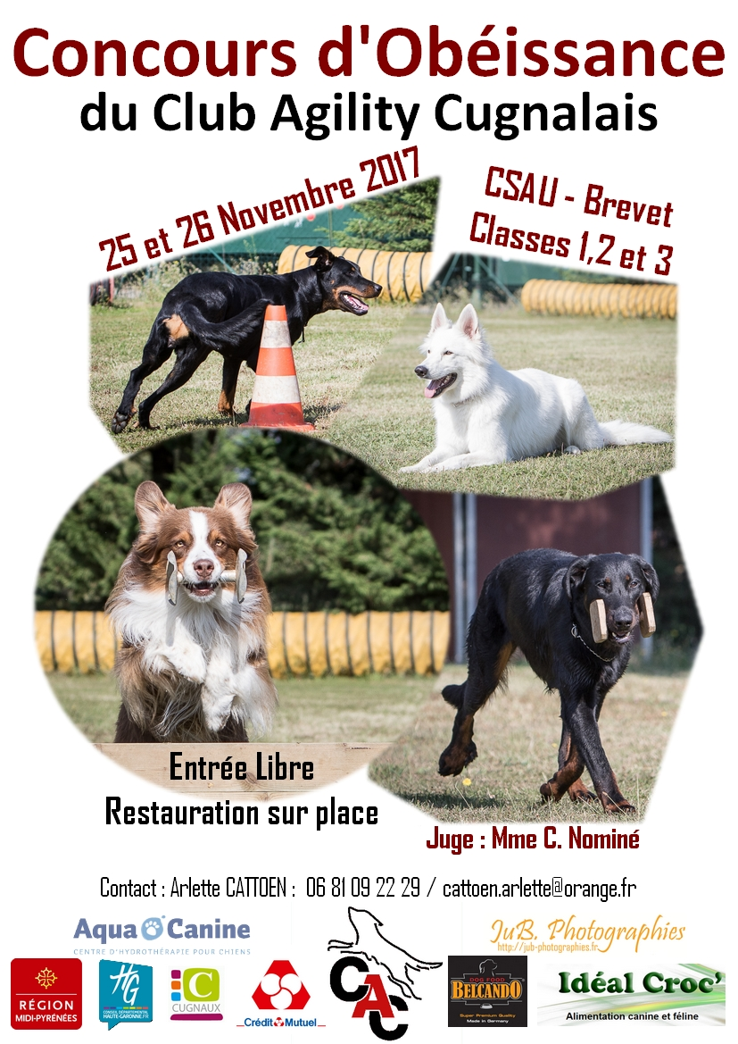 club canin 31 villeneuve tolosane